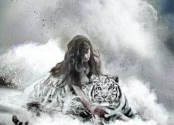 Cat. RICERCA - Patrizia Burra 3
